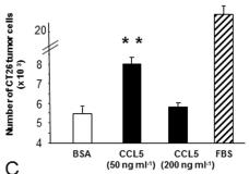 recombinant CCL5