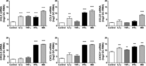 recombinant human CXCL10