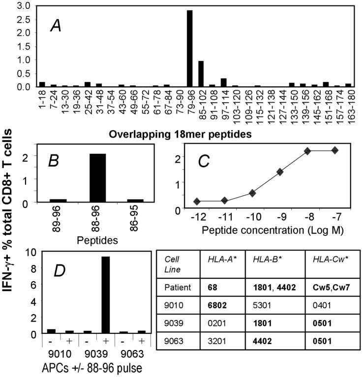 50 ng/ml recombinant human IFN-γ